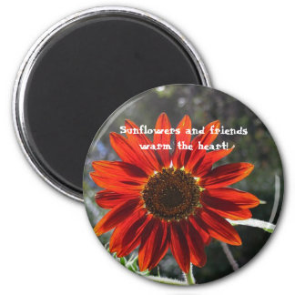 Sunflowers & Friends! Magnet