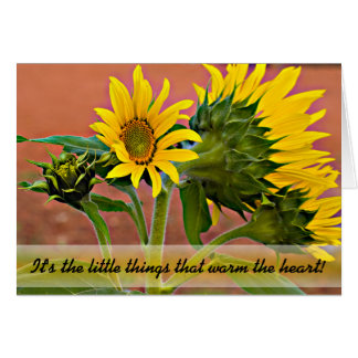 Sunflowers In Bud and Bloom Photograph Card