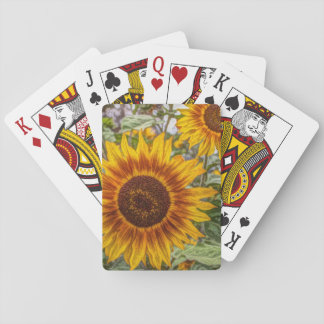 Sunflowers in field poker deck