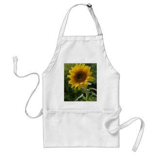 Sunflowers In Field Standard Apron