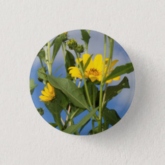 Sunflowers in Iowa Photo 3 Cm Round Badge