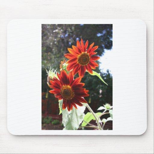 Sunflowers Mousepads