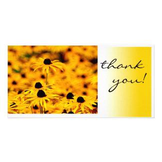 sunflowers photo greeting card