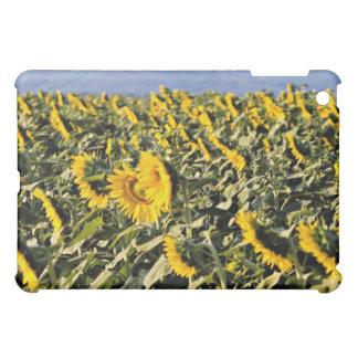Sunflowers, Tuscany, Italy flowers iPad Mini Cover