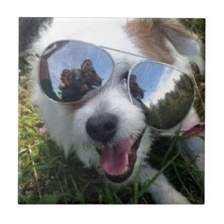 Sunglasses on dog BRIGHT FUTURE for ME Tile
