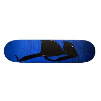 Sunglasses Skateboard