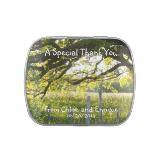 Sunlight And Trees Thank You Wedding Favor Jelly Belly Tins