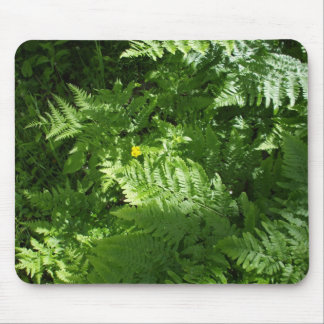 Sunlight on Ferns Mouse Pad