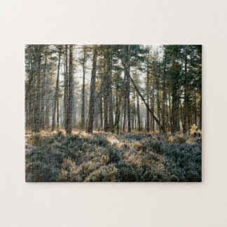 Sunlight shining through forest with frost jigsaw puzzle