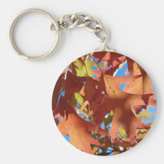 Sunlight Through Autumn Leaves Key Ring
