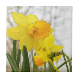 Sunlit Daffodils Tile