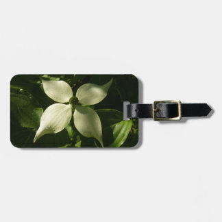 Sunlit Dogwood Blossom White Spring Flower Luggage Tag