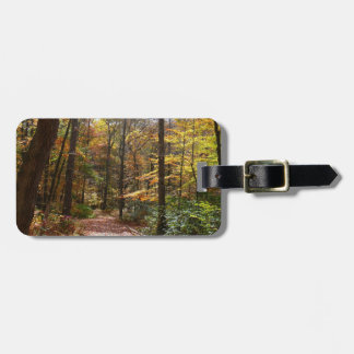 Sunlit Fall Trail in Laurel Hill State Park Luggage Tag