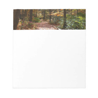 Sunlit Fall Trail in Laurel Hill State Park Notepad