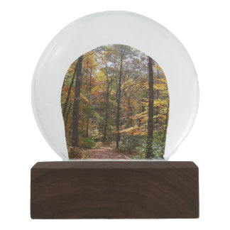 Sunlit Fall Trail in Laurel Hill State Park Snow Globe