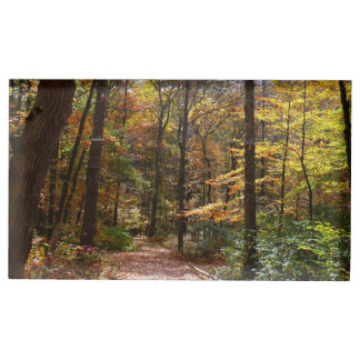 Sunlit Fall Trail in Laurel Hill State Park Table Number Holder