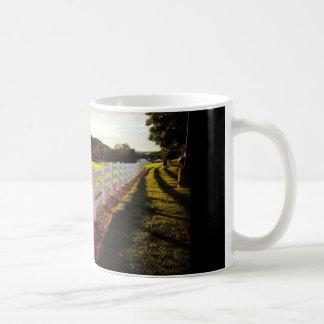 Sunlit Fence Mug
