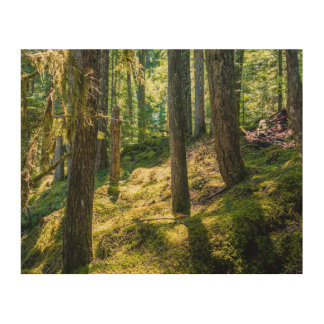 Sunlit Forest Wood Block Print