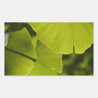 Sunlit Ginkgo Leaves Rectangular Sticker