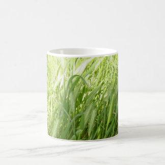 Sunlit Grass Basic White Mug