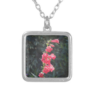 Sunlit Pink Penstemon Flower Square Pendant Necklace