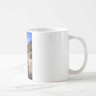 Sunlit Tree Coffee Mug
