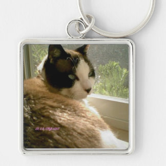 sunning kitty leave me alone I'm tanning Silver-Colored Square Key Ring