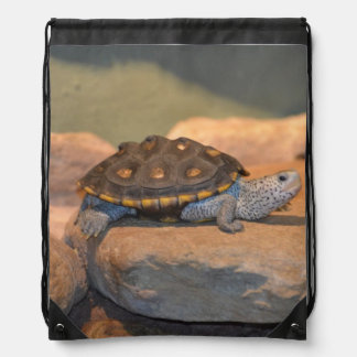 Sunning Turtle Drawstring Bag