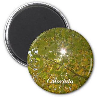 Sunny Aspen 6 Cm Round Magnet