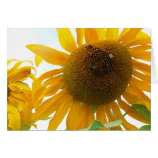 Sunny Bees Card