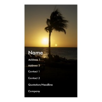 Sunny days and sunsets pack of standard business cards