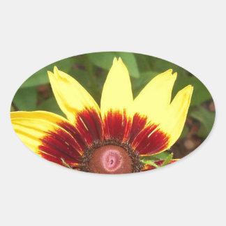 Sunny Daze Photography Logo Oval Sticker