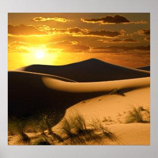 Sunny Desert Poster