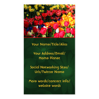 Sunny Garden Pack Of Standard Business Cards