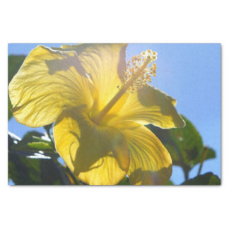 Sunny Hibiscus Tissue Paper