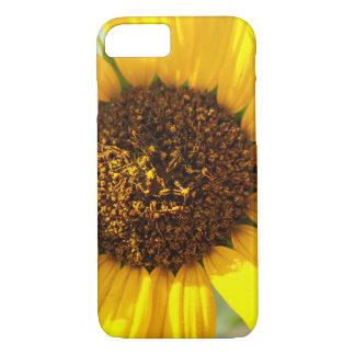 Sunny iPhone 8/7 Case