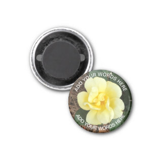 Sunny Knock Out Rose: Personalised Magnet