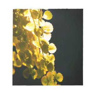 Sunny leaves notepad