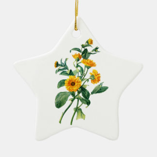 Sunny Marigolds Drawn From Nature Ceramic Star Decoration
