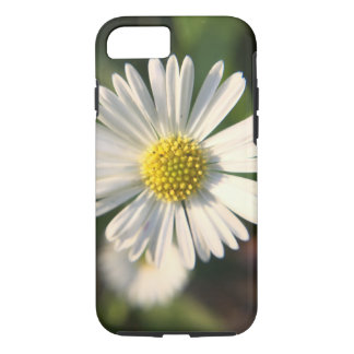Sunny miniature daisy in close-up iPhone 8/7 case