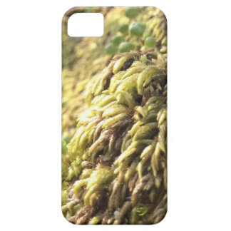 Sunny Moss and Worts iPhone 5 Case