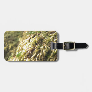 Sunny Moss and Worts Luggage Tag