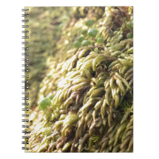 Sunny Moss and Worts Notebook