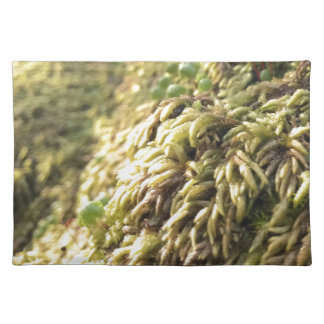 Sunny Moss and Worts Placemat