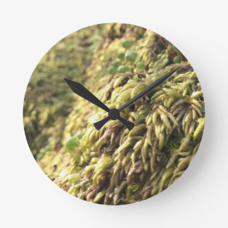 Sunny Moss and Worts Round Clock
