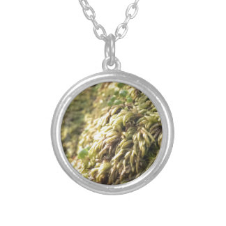Sunny Moss and Worts Silver Plated Necklace