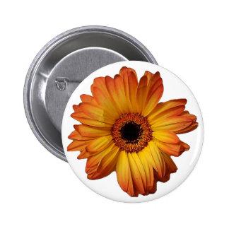 Sunny Orange gerbera flower bloom Pinback Buttons