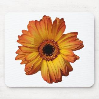 Sunny Orange gerbera flower bloom Mouse Pad