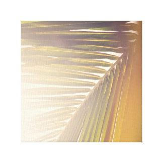 Sunny Palm Canvas Print