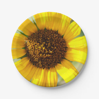Sunny Paper Plate